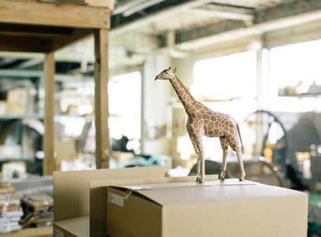 giraffe_01.png