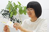 ペーパーカードデザインコンペ2017審査員インタビュー〈三澤 遥さん〉